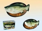 Zingende vis